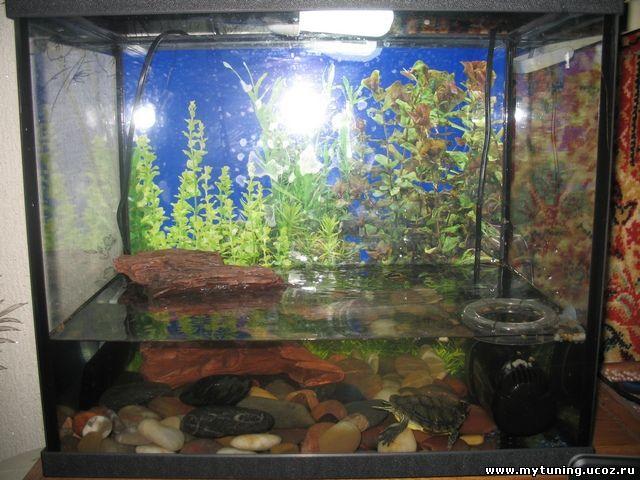 Обогреватель аквариум своими руками фото